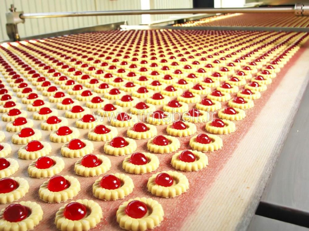 تسمه صنایع غذایی